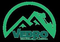 vedro logo